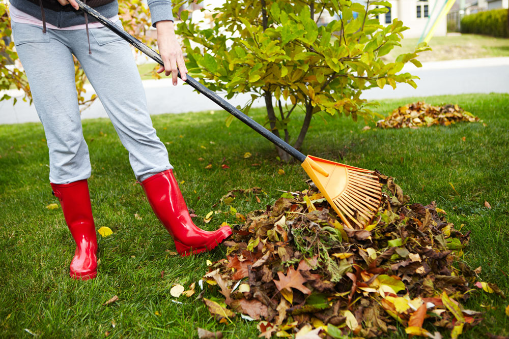 Do You Really Need to Rake?